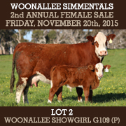 Woonallee Simmentals Sale