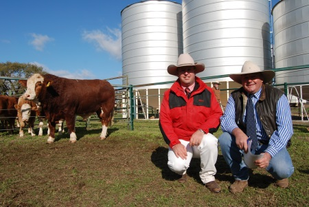 PHOTO: Elders agent Josh Crosby, Dubbo purchased Barana Juryman on behalf of Charleville client Noel Mobbs. He is pictured with Barana Simmental stud Principal Peter Cook, Coolah.