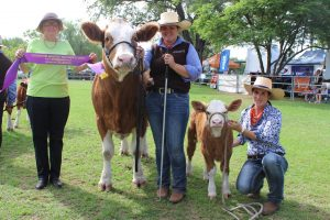 Rosie James, Wandoan, presents the senior champion female ribbon to Meldon Park Knockout, paraded by Bec Skene, Meldon Park Simmentals, Cecil Plains. Holding the calf is Kimmy Groner, Meandarra.