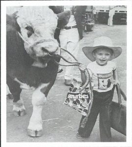Young cowboy Jefferson Stubbs of Glen Innes heads for home after the Sydney Royal Show with the Simmental bull, Waterloo Park Victor - 1978. From the booklet 40 years of Simmental in Australia released 2012