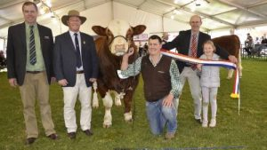 Landmark stud stock's Richard Miller and judge Peter Cowcher, Williams, WA with the grand champion bull and supreme exhibit, Woonallee Lady Killer L15, being held by Tom Baker, Furner. Sashing the bull is Jamie Withers,Nalpa stud, Strathalbyn and niece Sophie Proudman, Adelaide
