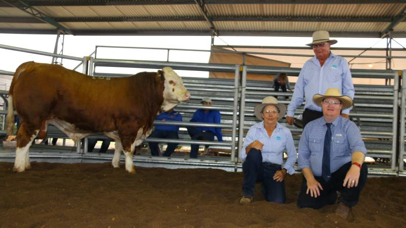 $17,000 top price bull Blue Dog Longbeach with vendors Jan and Doug Bradshaw (standing) with Mark Duthie, GDL Stud Stock representing Tom & Lizzie Baker, Woonallee Simmentals, Furner, South Australia.