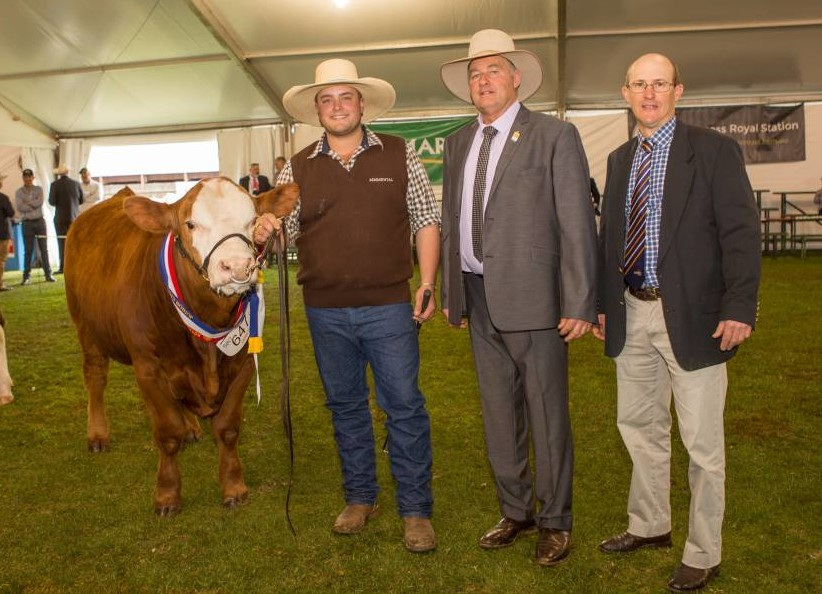 Jarrad Eason, Penola, holds the junior and grand champion bull, Woonallee Man O War, with judge Peter Falls, Finley, NSW and Jamie Withers, Nalpa, Wellington. Photo courtesy Stock Journal