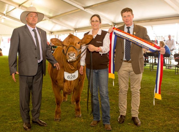Judge Peter Falls, Finley, NSW with Lizzy Baker, Furner, holding the junior champion heifer, Woonallee Simply the Best, being sashed by Frank Young. Photo courtesy Stock Journal