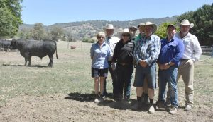 Veronica Yensch, Holbrook, Michael Glasser, GTSM, Tara and David Brewer, Gavin and John Yensch, Cameron Hilton, Corcoran Parker, and Chris Norris, Elite, with the top bull. Photo by The Land