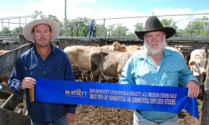 Kevin and Richard Preston, Eidsvold who won the Simmental steers section of the Burnett All Breeds Steer Show and Sale.