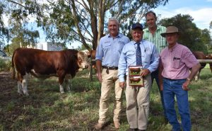 VIC BUY: Auctioneer Bernie Grant, Miller Whan & John's Peter Creek with the $9500 top price bull buyer Andrew Lyons, Balmoral, Vic, and Tugulawa's Gary Allen. Photo by Stock Journal