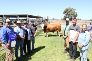 With one of the top-priced bulls, Willandra Muscles M72, were Zoetis South West representative and top-priced bull sponsor Jarvis Polglaze (left), Charles, Beryl and Peter Cowcher, Willandra stud, Landmark Williams agent Ben Kealy and buyers Danny Partridge and Jenny Maye, Tullamore Park Simmental stud, Busselton. Photo by Farm Weekly