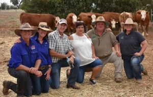 "Purchasers of top-price bull and volume buyers of heifers Trevor and Tracey Wells, ""Riverbrook"", Singleton, flanked by vendors John and Nicole Hopkins, Wormbete; and Stuart and Samantha Moeck, Valley Creek. Photo by The Land"