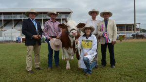 Champion junior led steer presented by Ray White Rockhampton and Beef Australia board member, Richard Bosnan; with owner Shannon Coombs, Rockhampton; parader Jess Noakes, Marlborough; Ray White chairman Paul White, Brisbane; and judge Michael Silvester, Forest Hills Brangus, Central Queensland. Photo by Fairfax Media