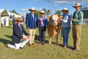 Grand champion Simmental bull, Meldon Park Major Player, with judges Charlie Salter and Matt Ahern, stud co-principle Lis Skene, Celcil Plains, handler Ben Passmore and Landmark's Richard Meacle. Photo by Fairfax Media