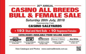 Casino All Breeds Catalogue front cover